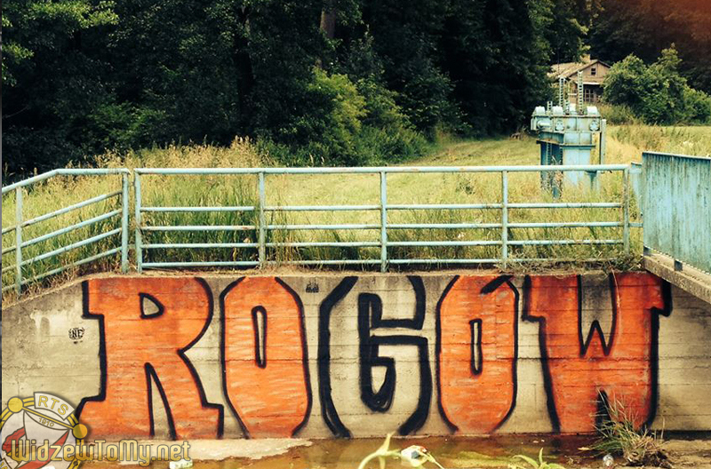 grafitti_widzew_323
