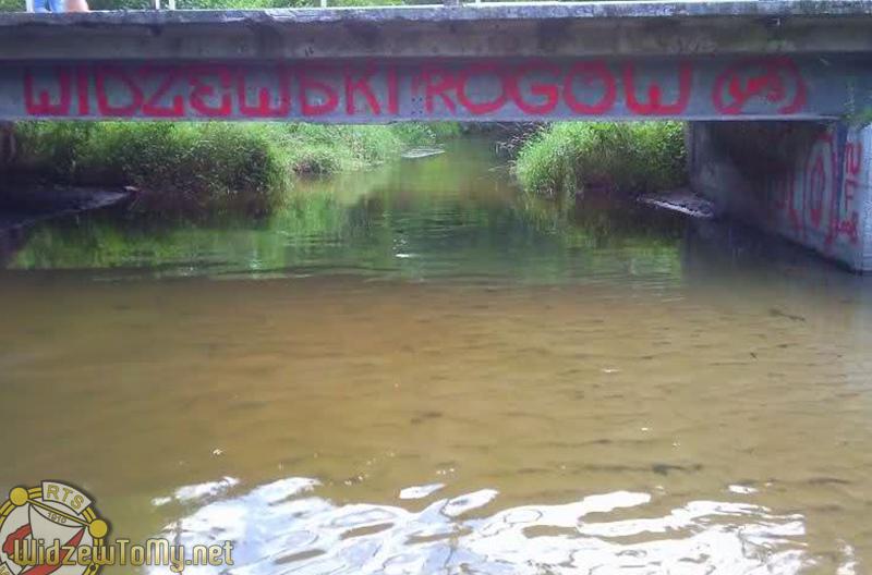 grafitti_widzew_679