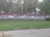 grafitti_widzew_473