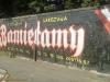 grafitti_widzew_489