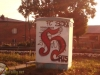 grafitti_widzew_777