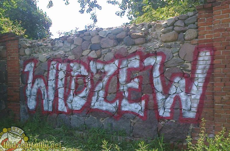grafitti_widzew_796