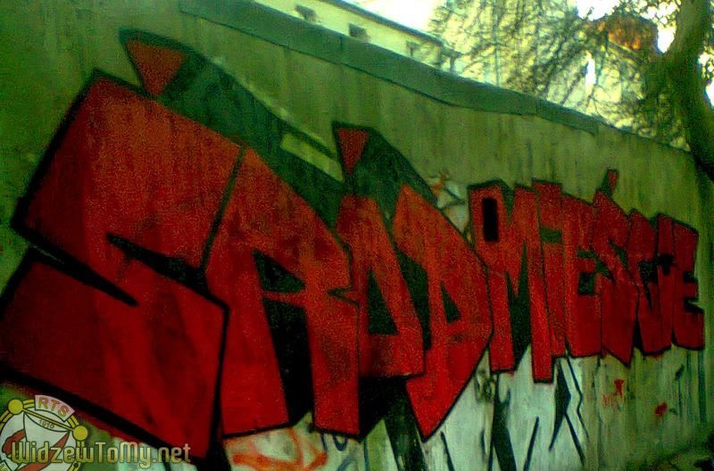 grafitti_widzew_21