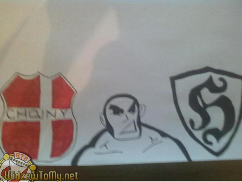 grafitti_widzew_282
