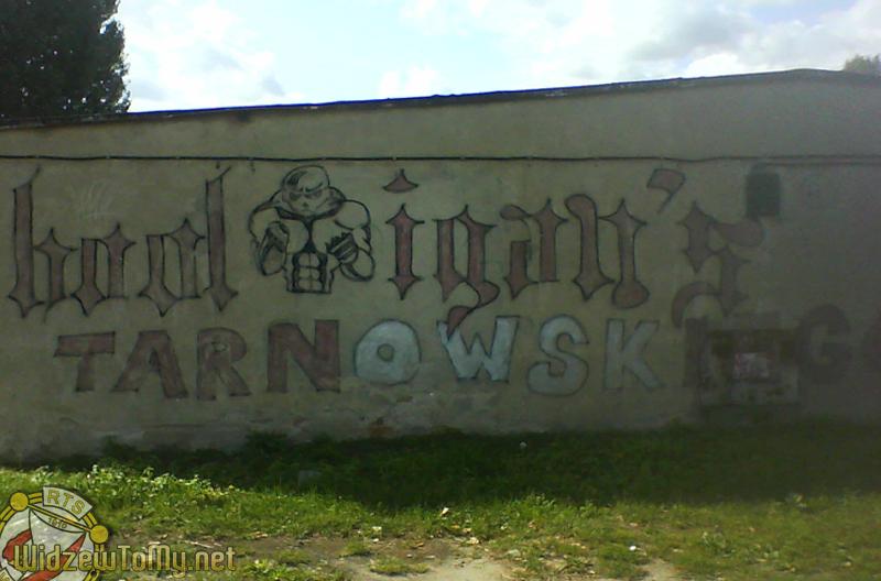 grafitti_widzew_363