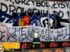 fc_viktoria_plze_-_ruch_chorzw_20120811_1220703043