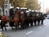 marsz_niepodlegoci_20111112_1280098497