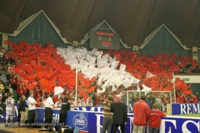 remes_cup_2008_4_20090702_1242227847