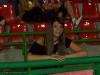 derby_20090820_1238553252