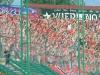 widzew_-_wisla_k_9_20100821_1053888661