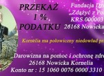 Kornelia_1procent